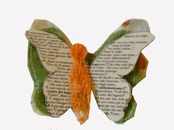 Farfalla 2 Sito