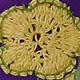 Fiore Uncinetto Giallo2
