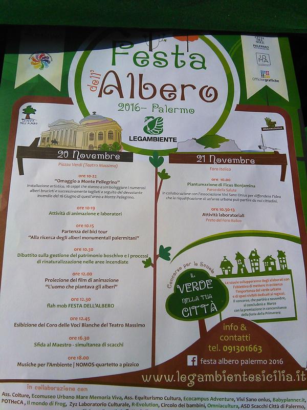 FESTA DELL'ALBERO 3